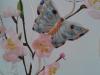 farfalla-celesre2