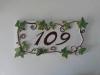numero-civico-109